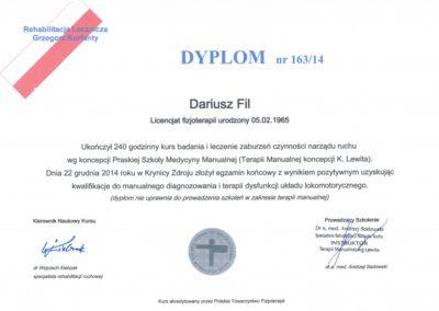 Darek Fil - dyplom ukończenia kursu wg koncepcji Lewita
